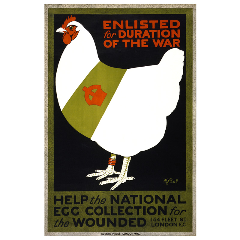 Poster for the National Egg Collection Scheme